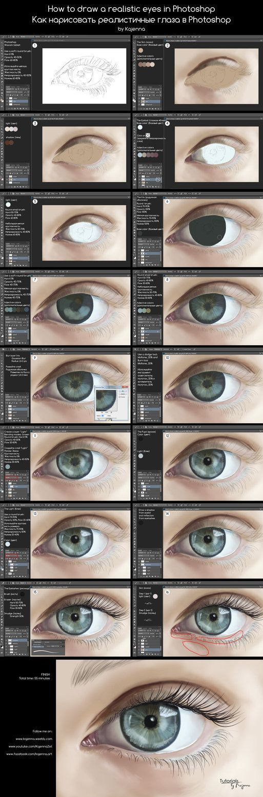 How to draw realistic eyes in Photoshop from Kajenna
