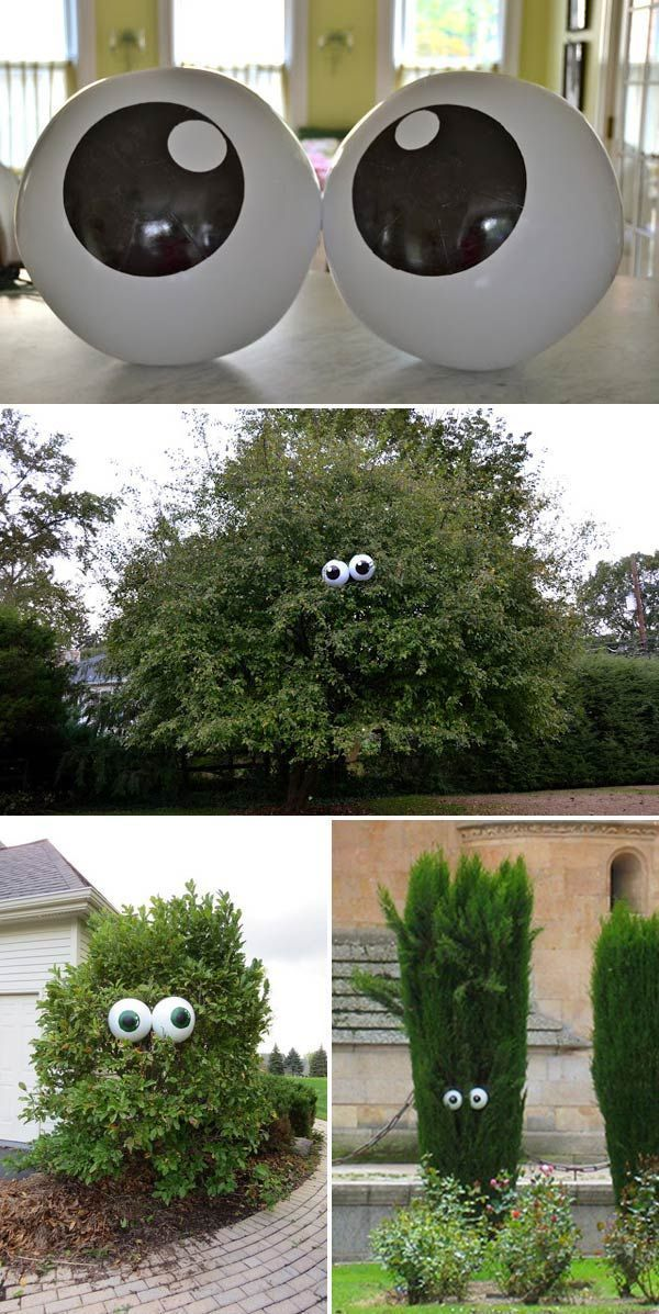 Get giant beach balls and paint eyes on them, then place in tree facing neighbou...