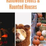 Fall in Omaha means tons of Halloween events. 2019 looks especially fun! This li...