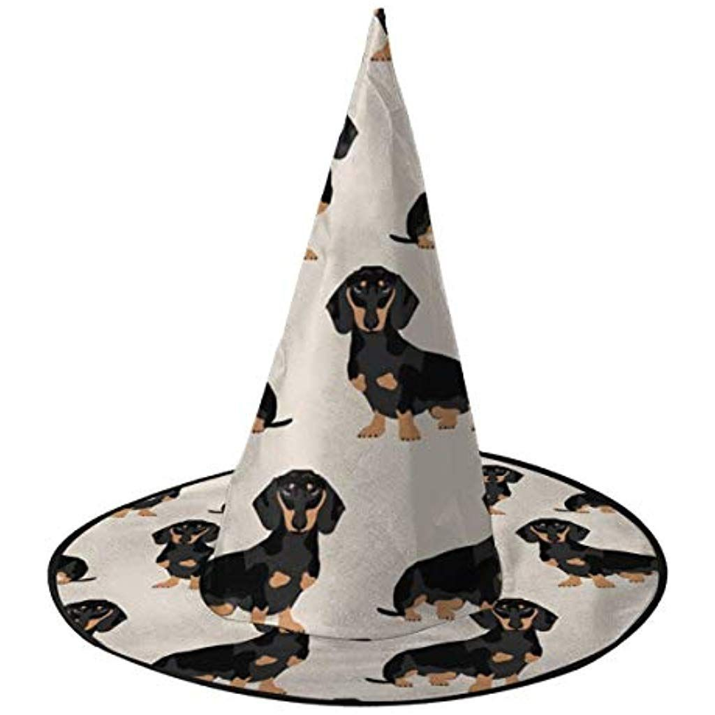Women Men Wicked Halloween Witch Hat Christmas Costume for Masquerade Wiener Dog...