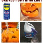 Tips & tricks to keep carved pumpkins for weeks! No longer rusty ...