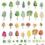 Download Photoshop Color Trees - #Color #download #Photoshop #tree #Tr ...