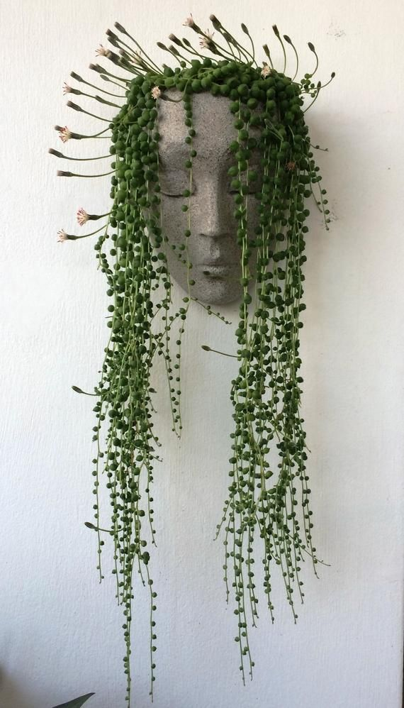 Vertical planter, planter, headplanters, concrete planter, wall planter, wall pot for plants, wall art, face planter, head planter, head pot